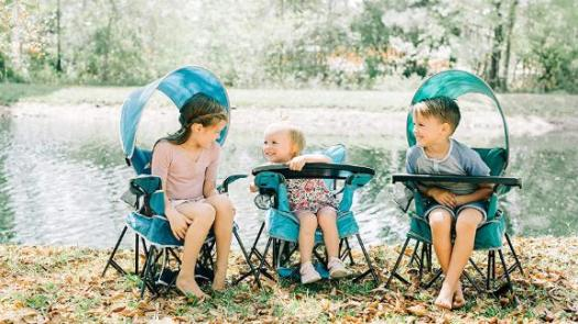 Baby Delight Go With Me Venture Deluxe Portable Chair