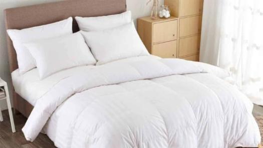 Alywin Home All Season Goose Down Comforter