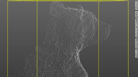A point cloud of a bear that can be used to make a 3-D model.