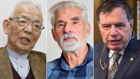 Soukuro Manabe, Klaus Haselmann and Giorgio Perisic