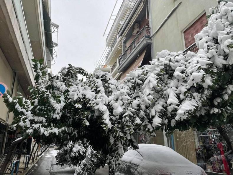 https://cdn.cnngreece.gr/media/news/2021/02/14/254480/photos/snapshot/larisa-xionia-3.jpg