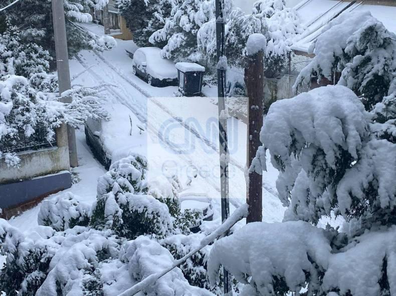 https://cdn.cnngreece.gr/media/news/2021/02/16/254706/photos/snapshot/602b67613fcc9.jpg
