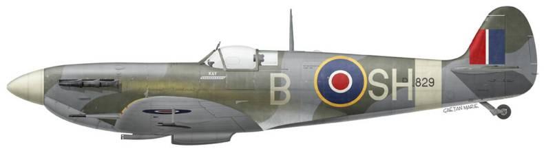 https://cdn.cnngreece.gr/media/news/2021/04/11/261670/photos/snapshot/pilotoi4-UK-Spitfire-Mk-Vb-BL829-John-Plagis-No-64-Squadron-early-1943.jpg