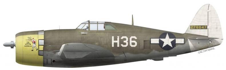 https://cdn.cnngreece.gr/media/news/2021/04/11/261670/photos/snapshot/pilotoi6-US-P-47D-15-RE-42-76047-The-Greek-Guerilla-Karavedas-310-FS-58-FG-v2-e1510343168287.jpg