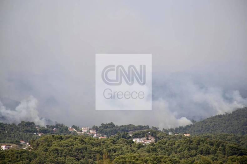 https://cdn.cnngreece.gr/media/news/2021/05/20/266614/photos/snapshot/fotia-loutraki-5.jpg