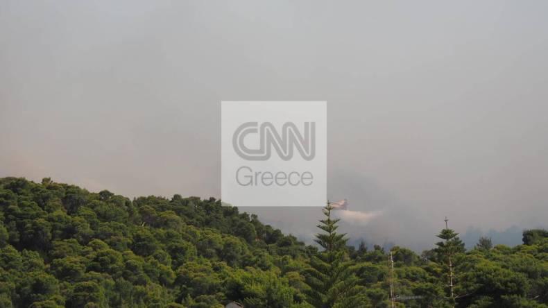 https://cdn.cnngreece.gr/media/news/2021/05/20/266694/photos/snapshot/fotia-sxinos-6.jpg