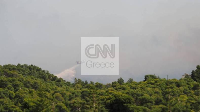 https://cdn.cnngreece.gr/media/news/2021/05/20/266694/photos/snapshot/fotia-sxinos.jpg