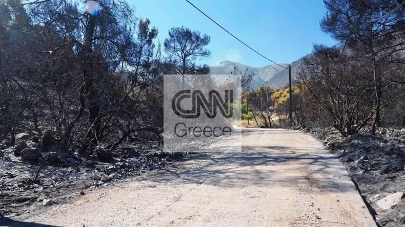 https://cdn.cnngreece.gr/media/news/2021/05/21/266765/photos/snapshot/fotia-sxino-5.jpg