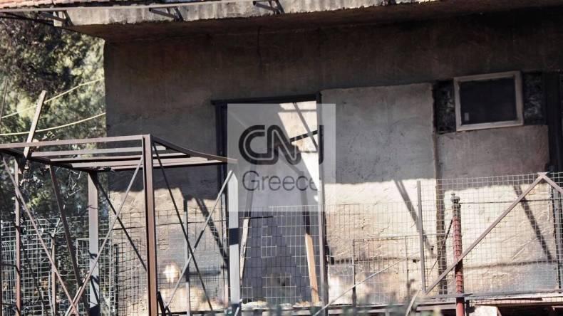 https://cdn.cnngreece.gr/media/news/2021/05/21/266765/photos/snapshot/fotia-sxinos-3-89.jpg
