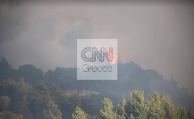 https://cdn.cnngreece.gr/media/news/2021/05/23/267019/photos/snapshot/pyr7.jpg