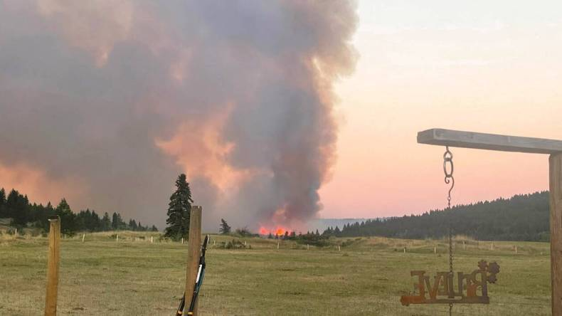 https://cdn.cnngreece.gr/media/news/2021/07/01/272415/photos/snapshot/canada-fire.jpg