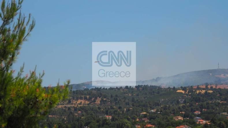https://cdn.cnngreece.gr/media/news/2021/07/10/273567/photos/snapshot/varnavas.jpg