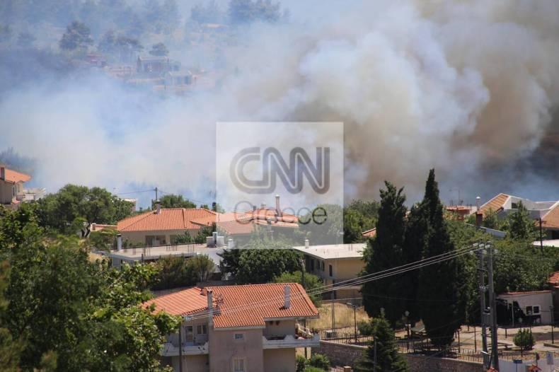 https://cdn.cnngreece.gr/media/news/2021/07/10/273590/photos/snapshot/fotia-varnava0_n-75.jpg