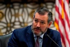 Senator Ted Cruz (R-Texas) (Photo by SUSAN WALSH/POOL/AFP via Getty Images)