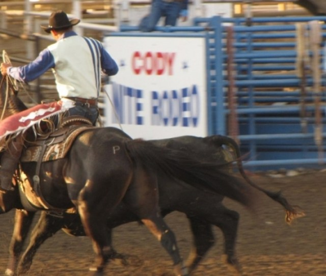 Nightly Rodeo
