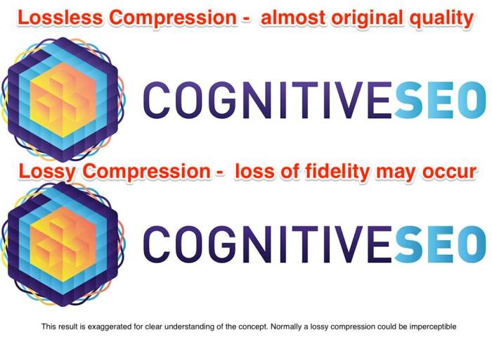 Lossless vs Lossy Image Compression for SEO