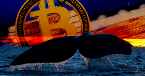 下落時に買い増す新たなクジラが出現か|世界第6位のBTC保有量