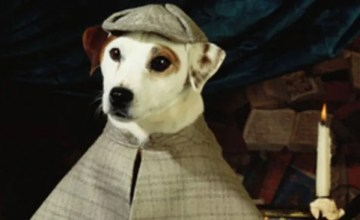wishbone-movie-peter-farrelly