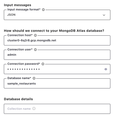 Input messages | How should we connect to your MongoDB Atlas database? | Database details