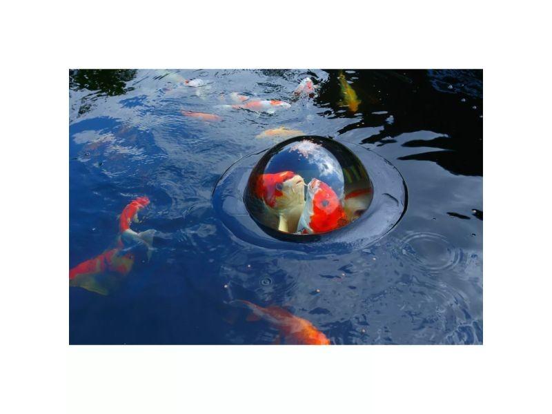 flottante poisson achat vente de