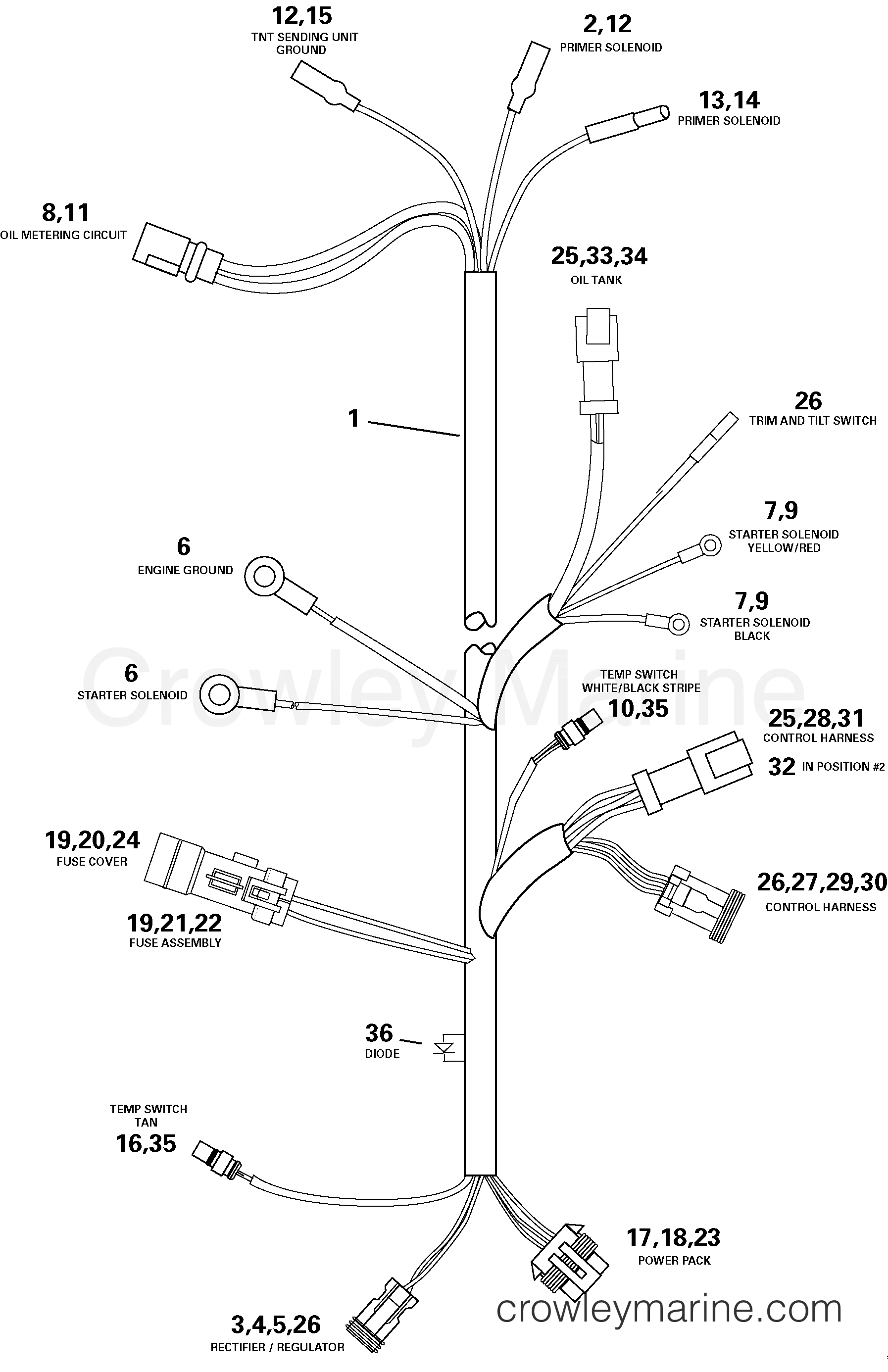 Engine Electrical Harness Assembly