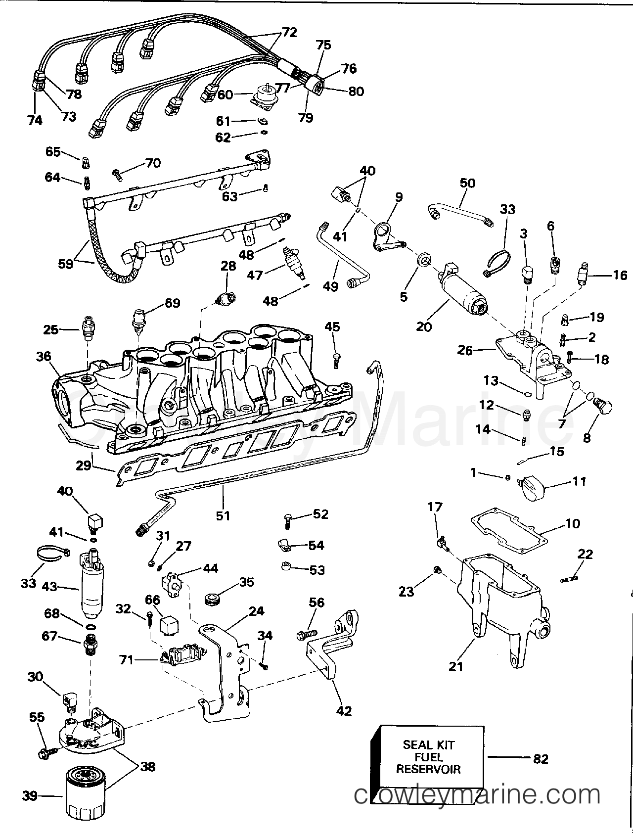 Fuel System Amp Lower Intake Manifold