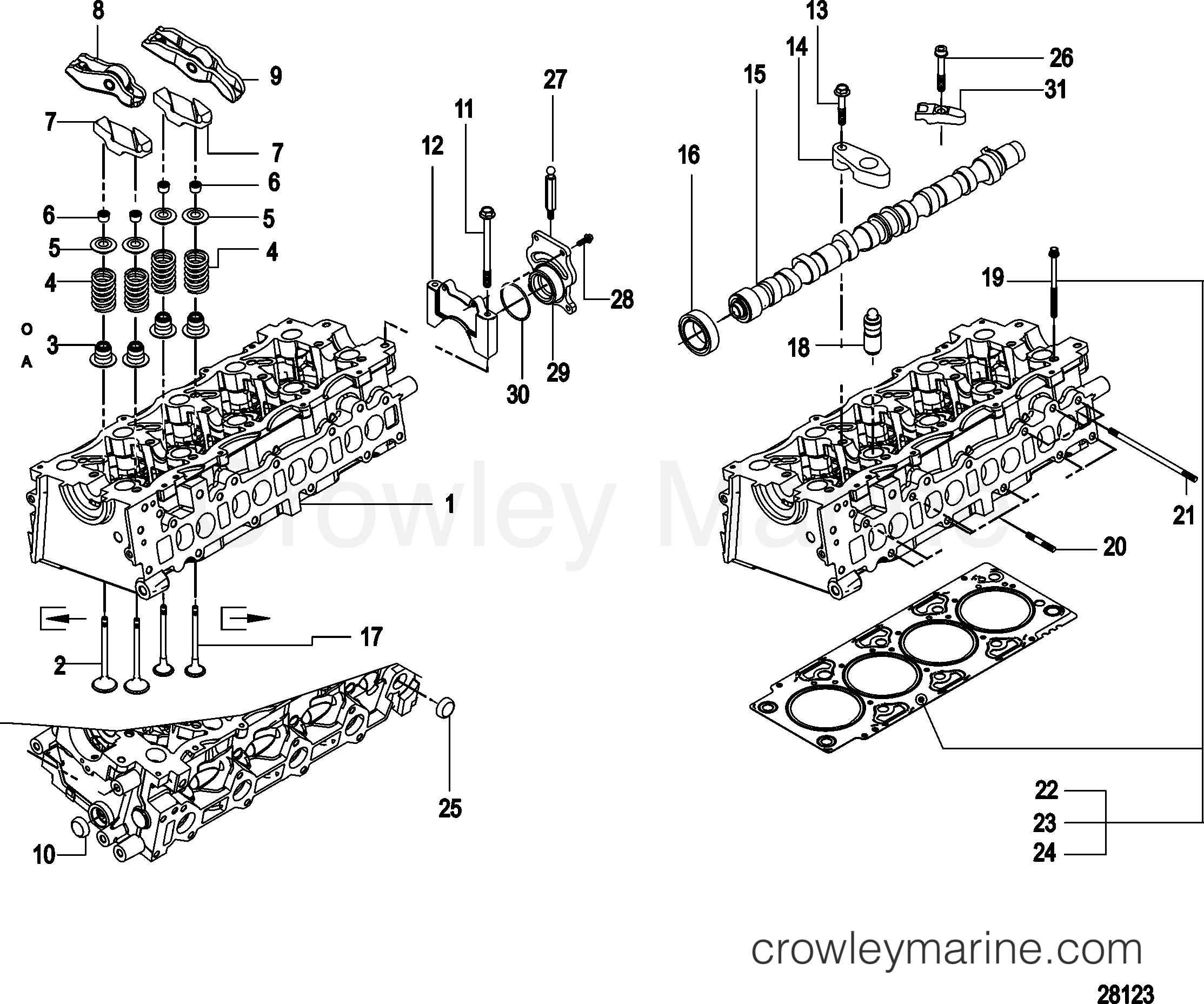 Camshaft And Cylinder Head