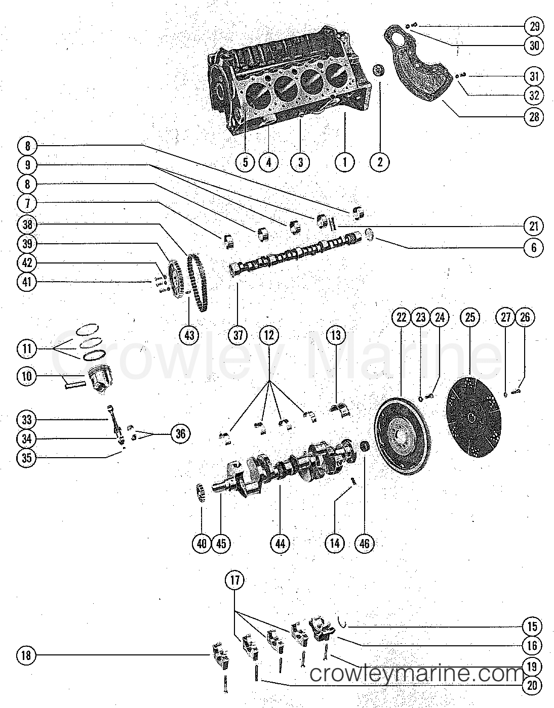 Cylinder Block And Pistons