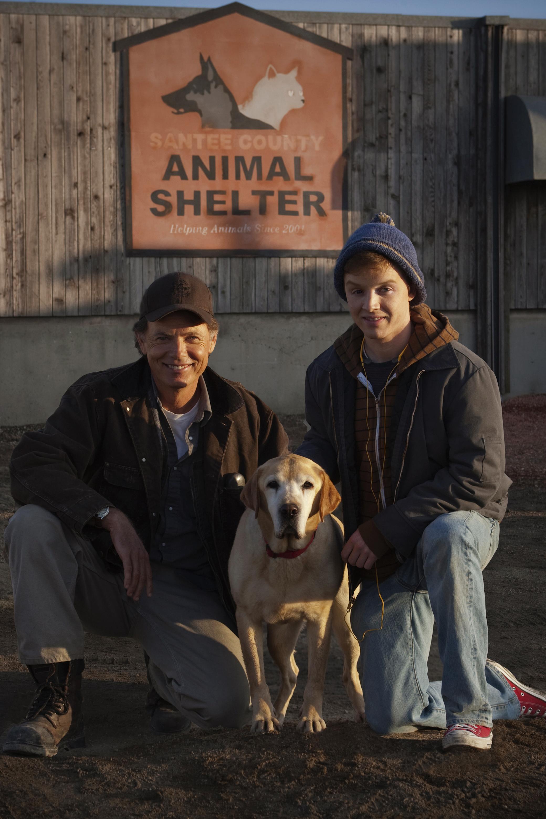 Cast A Dog Named Christmas Hallmark Movies And Mysteries