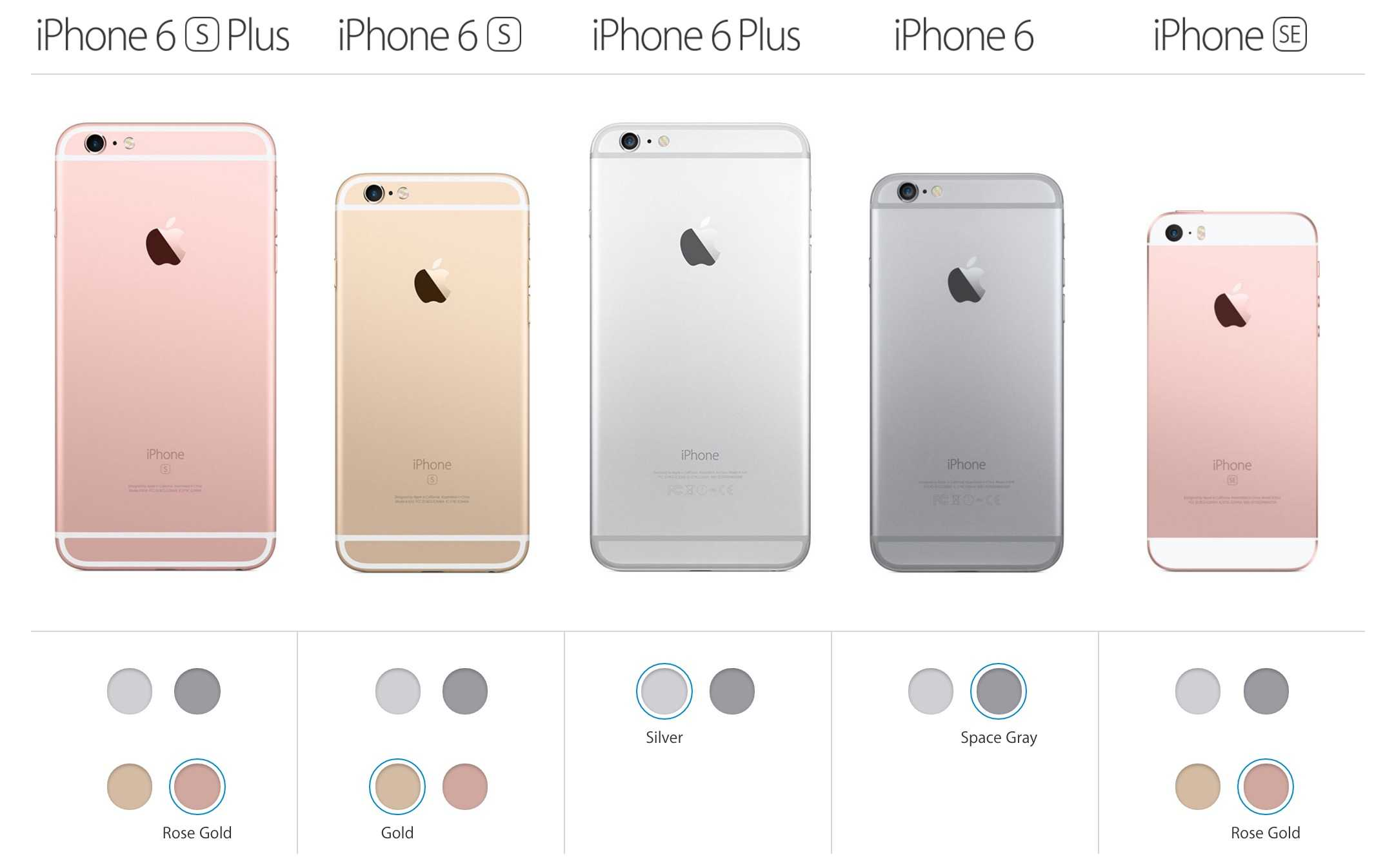 Best New Apple Varieties