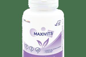 MaxiVits