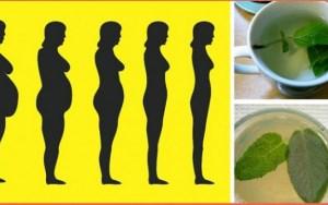 Chá Detox emagrece até 1,5kg por semana