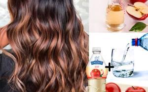 Quer ter um cabelo super brilhoso, com pontas alinhadas e com o couro cabeludo saudável? Então você precisa conhecer a dica de hoje!