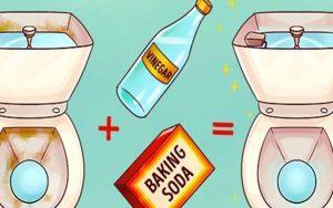 O que acontece se você jogar vinagre no vaso sanitário?