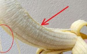 Os segredos dos fios brancos que existem na banana ? eles têm uma importante função e podem ser úteis a você! ?