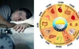 Você acorda todas as noites no mesmo horário? Saiba por que isso acontece!