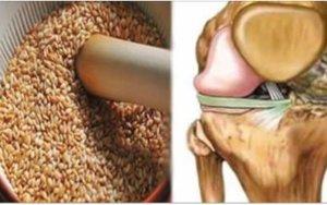 A semente que regenera tendões e tira a dor dos joelhos - Assim se prepara