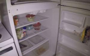 5 dicas do que fazer com itens da sua geladeira na falta de eletricidade