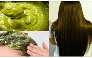 Aprenda como fortalecer, parar a queda e acelerar o crescimento do cabelo com esta máscara caseira