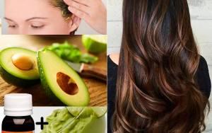 Quer uma hidratação natural, poderosa para o crescimento dos cabelos? Então essa receita é para você!