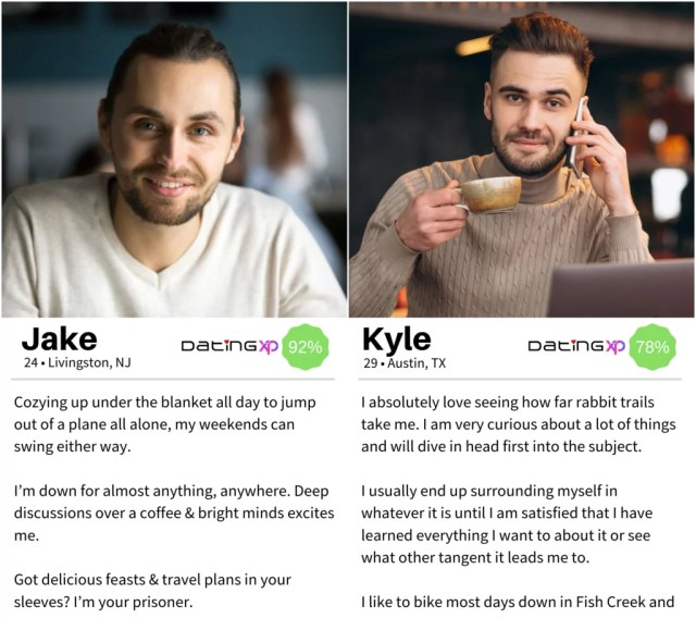 23 Irresistible Dating Profile Examples For Men — DatingXP.co
