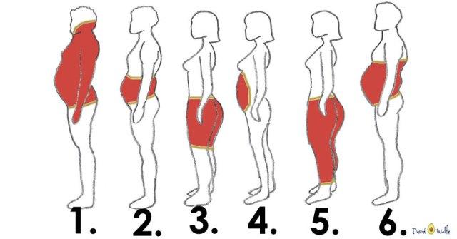 Fat image