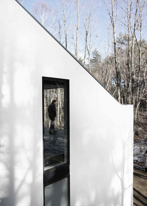 Clear And Subtle Dream House In The Forest
