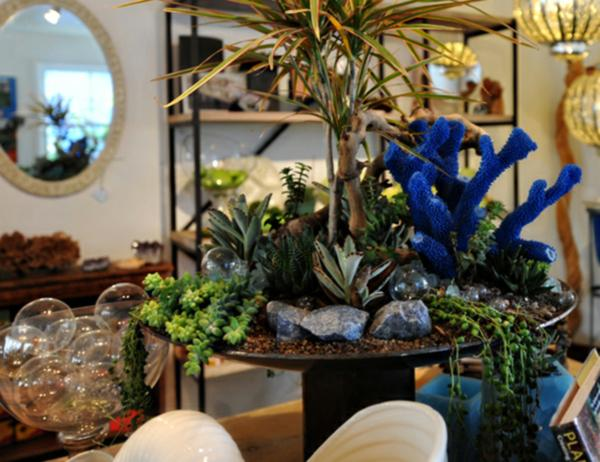 modern succulent garden ideas Indoor Gardening Ideas to Beautify Your Space