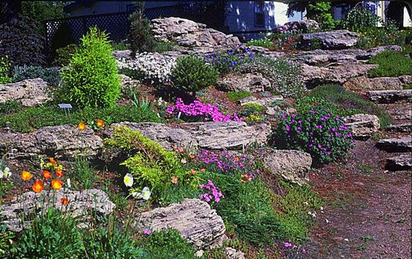 20 Fabulous Rock Garden Design Ideas on Rock Backyard  id=85070