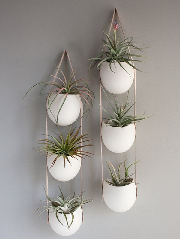 Hanging Planters And Container Garden Ideas For Indoors on Hanging Plant Pots Indoor  id=44166