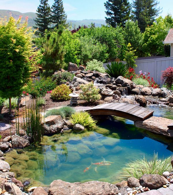 Natural Inspiration: Koi Pond Design Ideas For A Rich And ... on Koi Ponds Ideas  id=89328