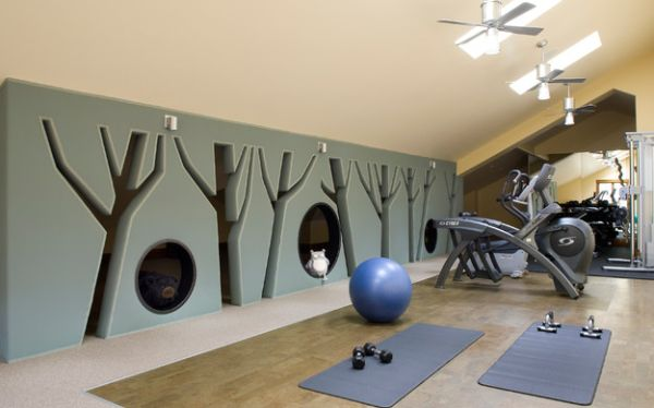Home Gym Decorating Ideas