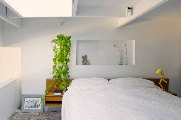 Hanging Plants And Soil Less Vegetation For Green Homes