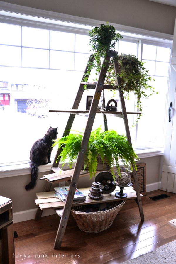 Indoor Hanging Plant Stand